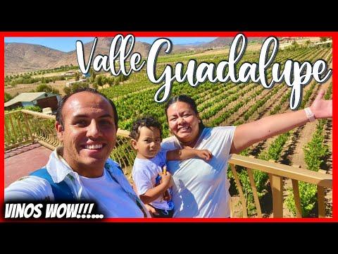 😍 Valle Guadalupe BAJA TOUR ❤️ Los MEJORES vinos del MUNDO 😱 Los 3 mejores que DEBES visitar? ✅
