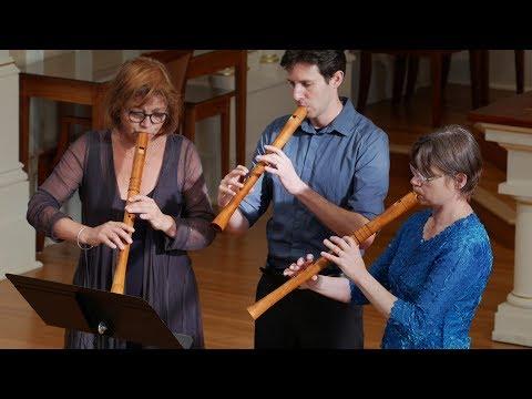 O Virgo Splendens (Llibre Vermell De Montserrat) Voices Of Music 4K