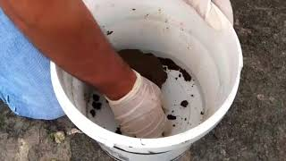 CANLI YEM HAMURLA KEFAL NASIL TUTULUR ( 3)  balık avı