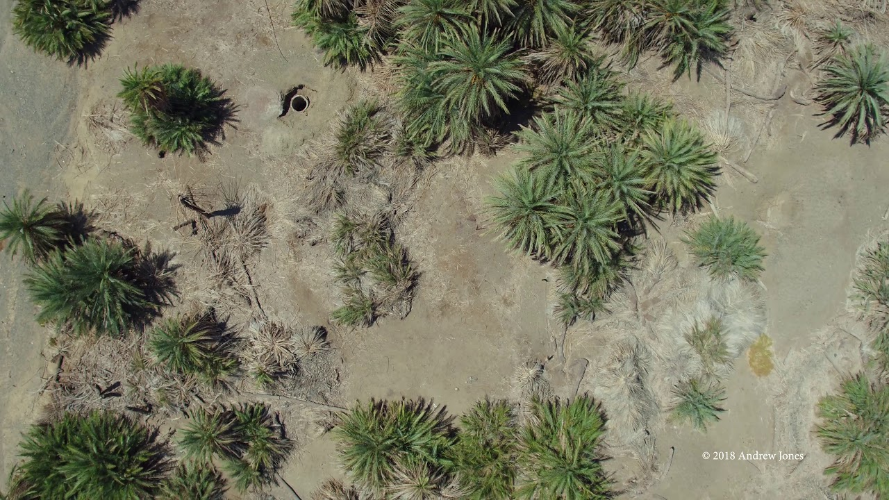 Download Elim Oasis - Aerial views of the Exodus