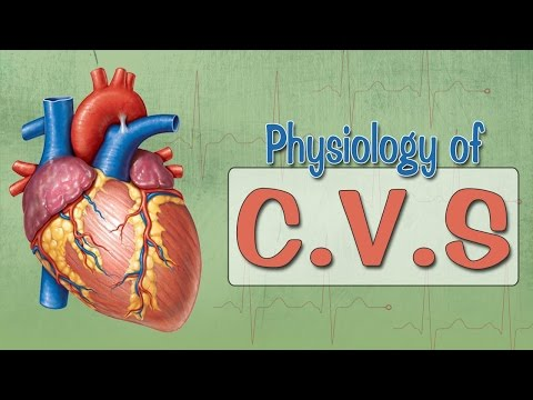 Easy Physiology | C.V.S | Cardiac Action Potential