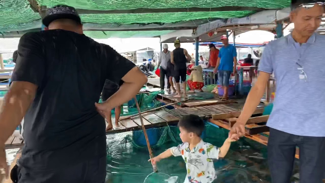 Hải Sản Đang Bơi tại Làng Chài Nha Trang | Hà Còi