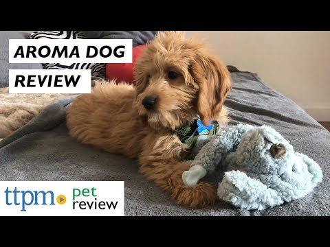 Aromadog Plush Dog Toys From Multipet
