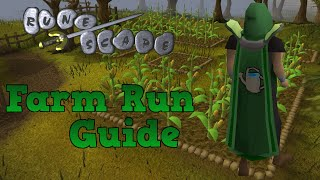 Runescape 2007 - Farm Run Guide