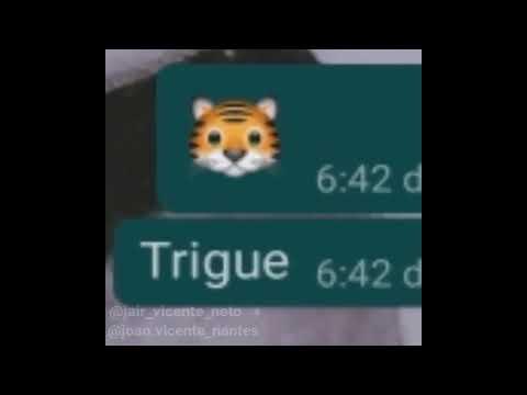 GOOGLE TRADUTOR DE PORTUG4L (MEME)