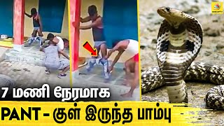 Jeans Pant VS Snake : இளைஞரின் பரிதாப நிலை என்ன? | Viral Video | Latest Tamil News