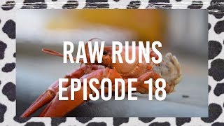 Raw Runs Episode 18: RedBull Burrito