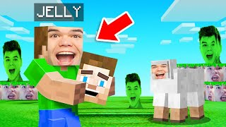 Changing ALL TEXTURES To JELLY'S FACE! (Minecraft)