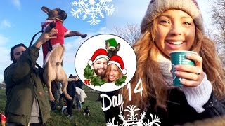 The Christmas Frenchie Walk! ❄ Vlogmas 14 Thumbnail