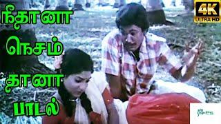 Neethana Nesam Thana ||நீதானா நெசம் தானா || Love Duet Melody H D Song