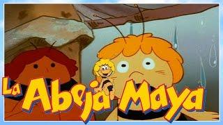 La abeja Maya - episodio 11 - la libellula - capitulos completos en español latino
