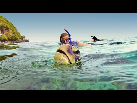 Best Spot To Snorkel With Giant Sea Turtles: Apo Island Philippines | GoPro