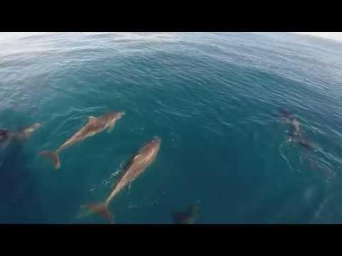 Kauai By Stephanie Na Pali Coast