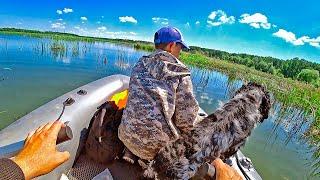ЗЛЫЕ КРОКИ АТАКУЮТ Рыбалка на щуку и окуня в камышах Приключения на живописном озере