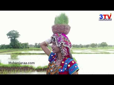 3TV  Banjara Teej Song 2017 Promo | Special Song On Teej Festival | 3TV BANJARAA Exclusive