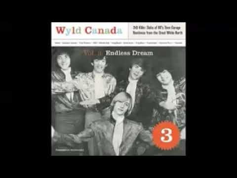 VA - Wyld Canada Vol 3 - Endless Dream : KILLER Slabs Of 60's Teen Garage Punk Nastiness Music ALBUM