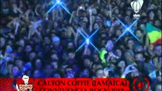 calton coffie - I WANT YOU - Pereira - Risaralda COLOMBIA