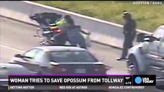 Watch: Woman tries to save opossum on side of tollway