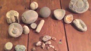 Hunting for agates, fossils and agatized fossil sea shells on Murdock Beach, Joyce, WA.