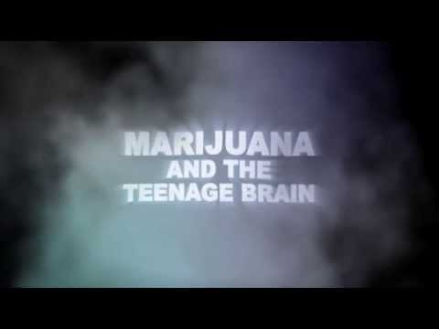 Marijuana and the Teenage Brain