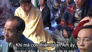 715 thiền lục quốc tế thanh hải v thượng sư gặp đồng tu u lạc tại young dong đại hn