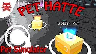 Hatte til mine pets - Pet Simulator - Dansk Roblox