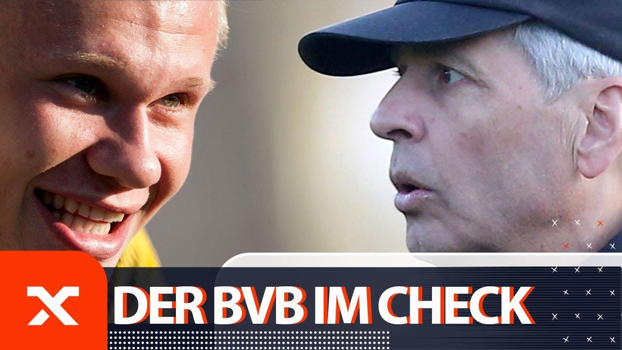 BVB in Marbella: Erling Haaland und die Sorgenkinder | Borussia Dortmund | Bundesliga | SPOX