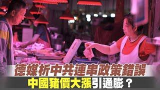 德媒析中共連串政策錯誤 中國豬價大漲引通膨?|港議員揭831太子站紀錄遭修改 三名傷者被消失|晚間8點新聞【2019年9月17日】|新唐人亞太電視