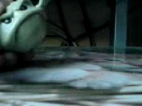 Pokemon Episode 27 Hypno