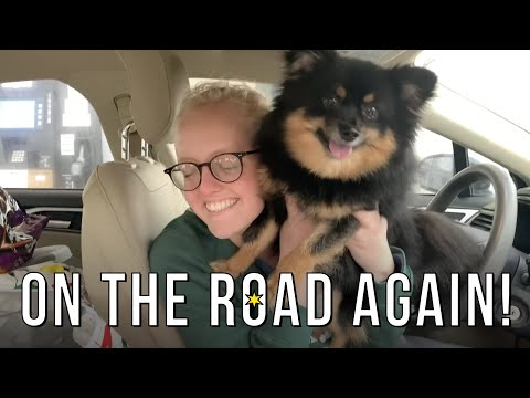 Driving From Chicago To Orlando In One Day!