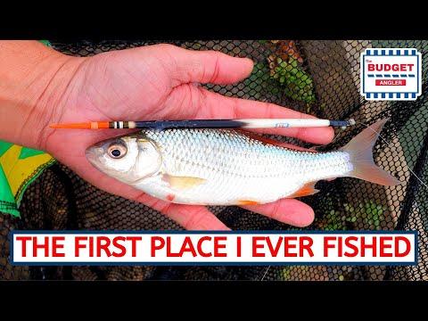 Coarse Fishing At Fairlands Lakes Stevenage
