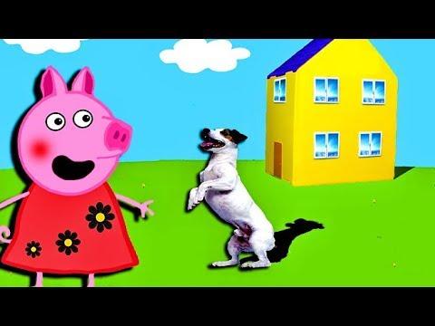 Мультики Свинка  Петта и Джордж принесли в дом Собаку  Мультфильмы для детей на русском