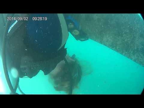 diving st jacob.2