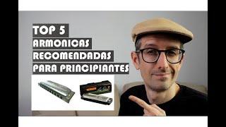 TOP 5 DE ARMÓNICAS RECOMENDADAS PARA PRINCIPIANTES!
