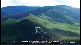 Гора Бурхан. Зачем Китай уничтожает леса. №813