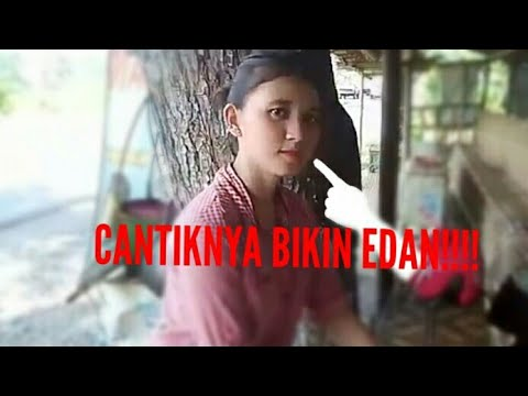 terjemahan lirik lagu EDAN TURUN bhs.indonesia