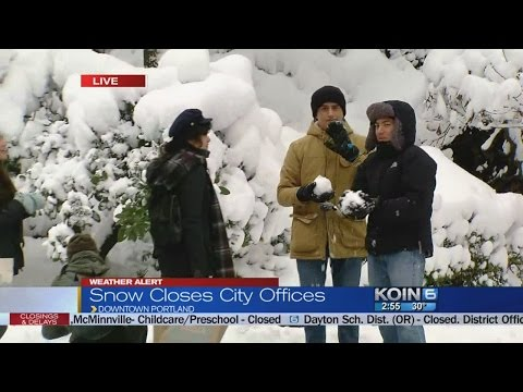 Snow closes city offices