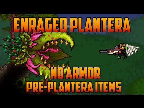 Terraria - Enraged Plantera, no armor & pre-plantera gear