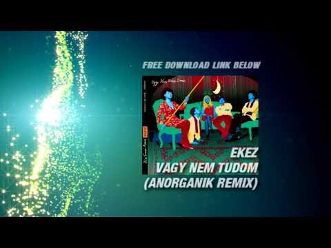 EKEZ : Vagy Nem Tudom anORGANik remix