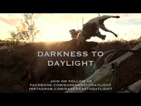 Pig Hunting DVD Darkness To Daylight