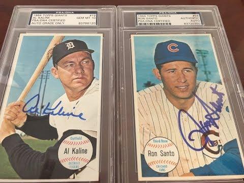 Carl Yastrzemski 1964 Topps Giants PSA/DNA autograph set : Vintage Baseball Cards