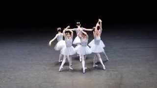 Vienna State Opera, funny ballet