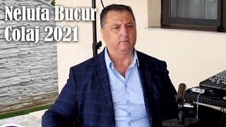 Download lagu Neluta Bucur - Muzica de Petrecere, Chef si Voie Buna - Colaj 2021 Hore si Sarbe