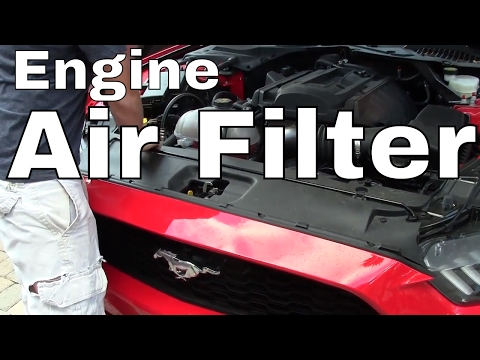 Ford Mustang Engine Air Filter--  CHANGE or REPLACE