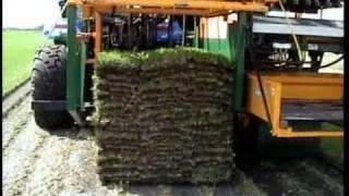 Kesmac SLAB-MATIC 3000 Automatic Multi-Row Slab Sod Harvester