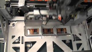 Strongpoint automation robotics material handling and conveyor 44534 blueprint automation bpa robotic top load case packer malvernweather Image collections