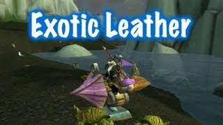 Exotic Leather Farm Guide World Of Warcraft Youtube