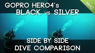 GoPro Hero4 Diving Comparison Black vs Silver (Daytime)