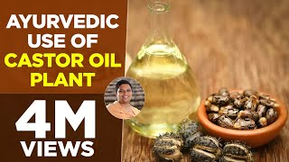 Ayurvedic use of Castor Oil Plant (Arand) | Acharya Balkrishna thumbnail