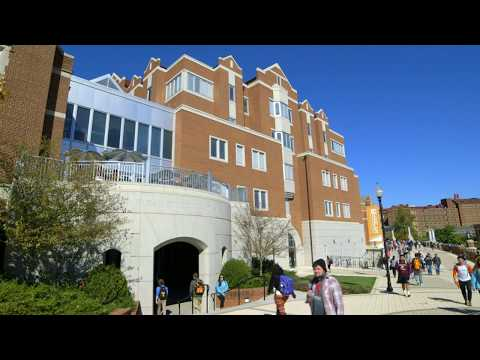 Students Launch Successful Careers in Analytics at the Haslam College of Business.